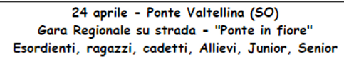 PONTE IN FIORE.png