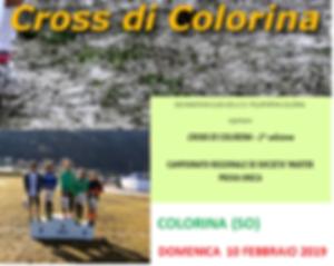 COLORINA_edited.png