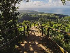 tet-paul-nature-trail-690x530.jpg