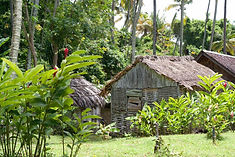 traditional-karib-housing-at-the-morne-c
