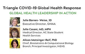 Copy of Triangle COVID-19 Global Health