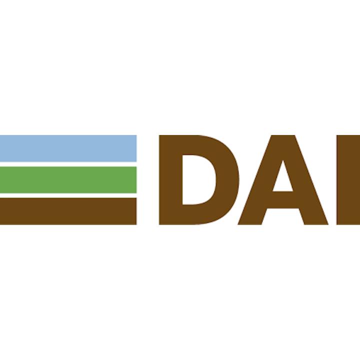 DAI logo 2