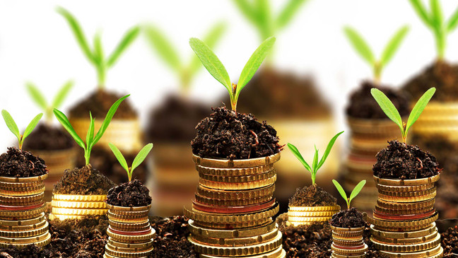 How to Choose the Right Mutual Funds