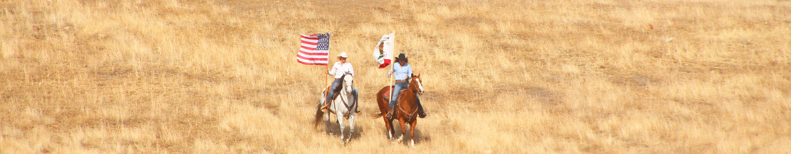 Parkfield_Rodeo_Flags