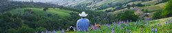 V6_Ranch_landscape