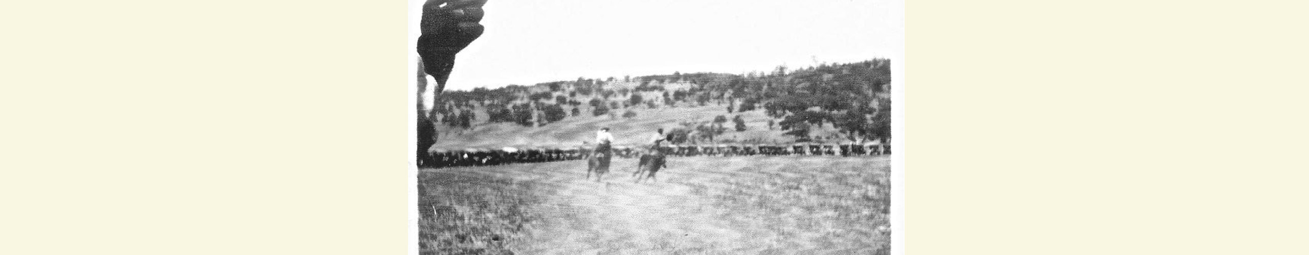 Parkfield_History_Rodeo