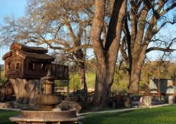 Parkfield_Cafe_Tree_House