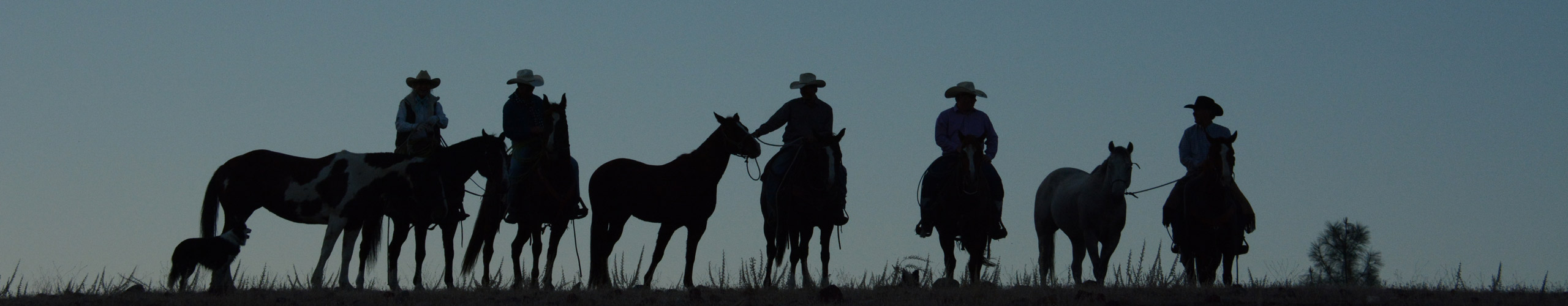 V6_Ranch_Silhouette