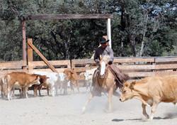 V6_Blue_Oak_Horse_Camp_Richard_Winters