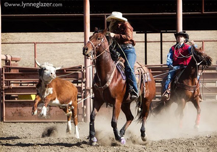 Parkfield_Rodeo_Roping