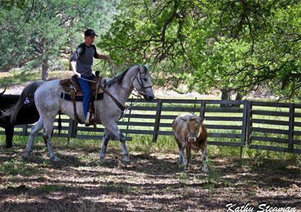 V6Ranch_Fall_Cowboy_Roping