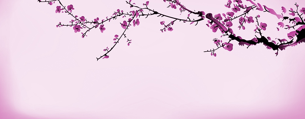 Cherry Blossoms crop1.png