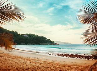 Palmen Blick auf den Strand