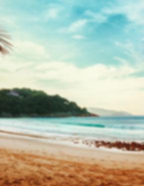praia, bem estar, azul, verde, vegetação, turismo, viajar, viagens