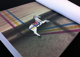 White Shade Graphics - Best Portrait Photobook Designing and Printing in Lucknow