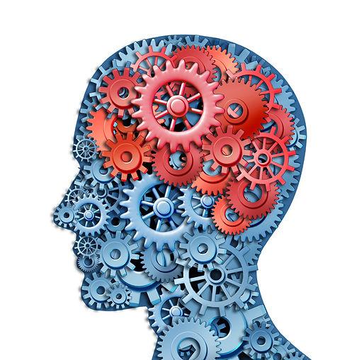 cogs in a brain.jpg