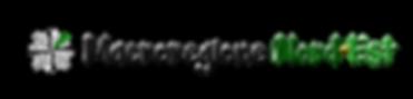 Macroregione N-E logo trasp.png
