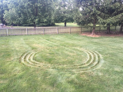 collaboration with lawn mower
