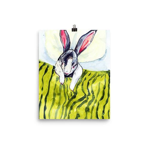 Sleeping Bunny Print
