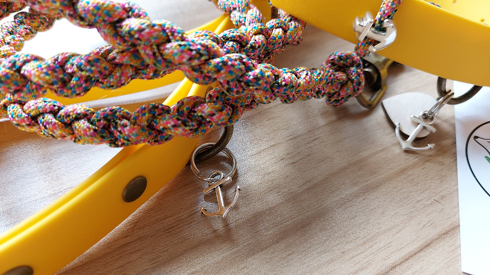 Biothane & paracord collar and lead set