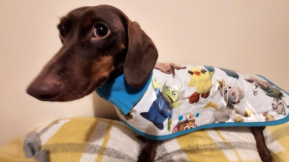 Waterproof dachshund coat in Toy Story design