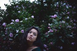 Blooming Stillness