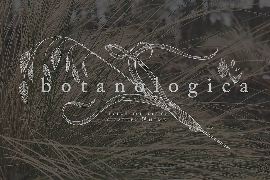 Hand-drawn botanical logo for Botanologica
