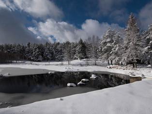 Impressions hivernales