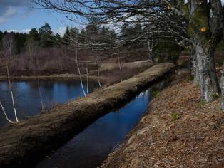 Instandstellung Seen und Bäche (Schlussteil)