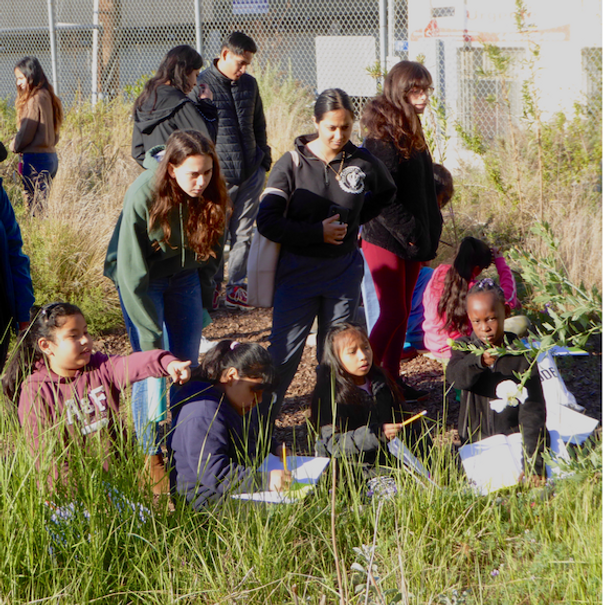 Mendoza-JSE-Ecoliteracy-Article-Thumb-.p