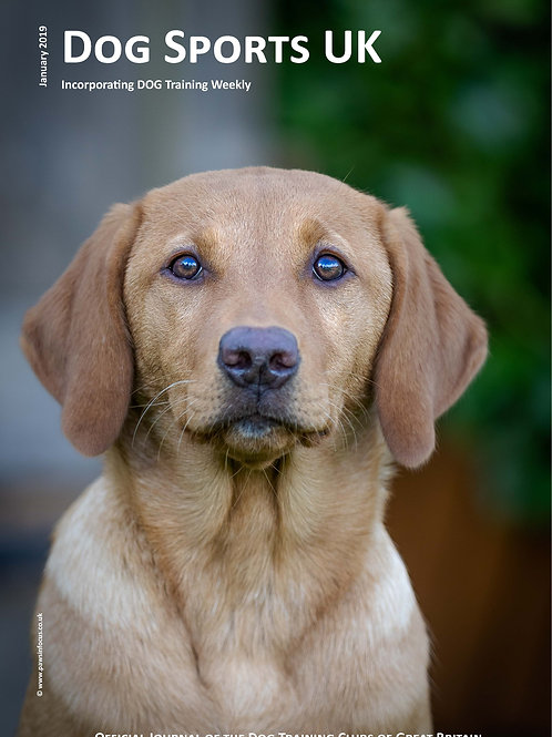 Dog Sports UK - Digital Edition