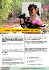 Adopting A Dog.jpg