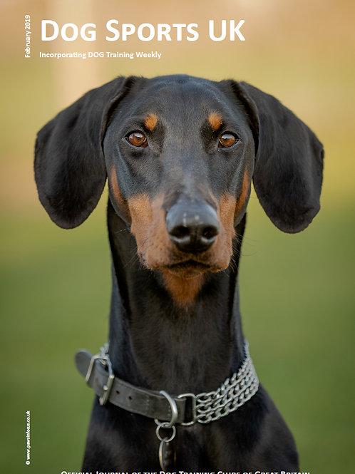 Dog Sports UK - Quarterly Subscription (3 editions)