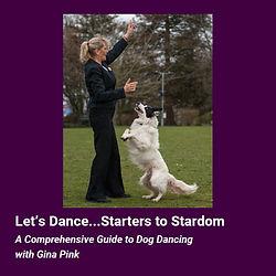 Gina-Pink---Lets-Dance-FC-400.jpg