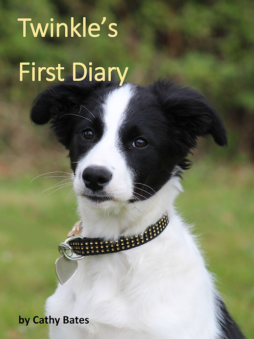 Twinkle's First Diary