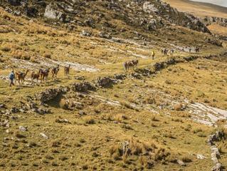 The Great Inca Trail 偉大的印加古道工程