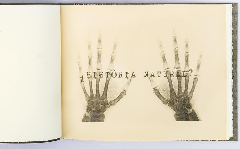 ROSANA PAULINO - Histotria Natural 00 -