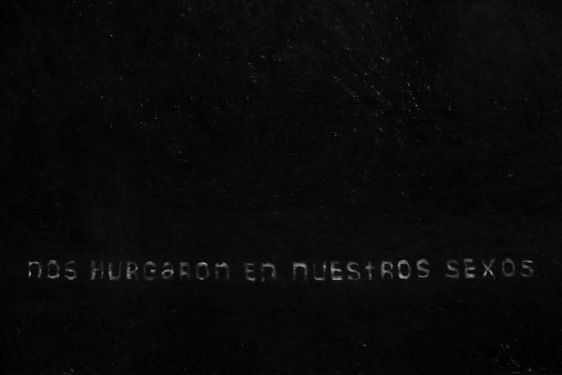 Ana Gallardo Dibujos Textuales - Galardo