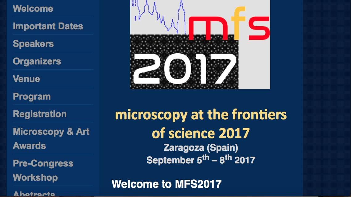 MFS2017