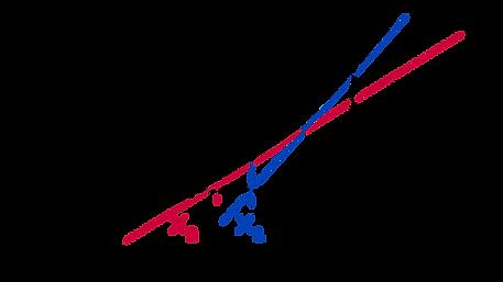 Graphical representation of Netwon-Raphson method