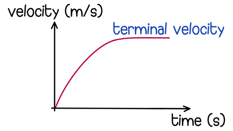 Velocity-time graphs for terminal velocity