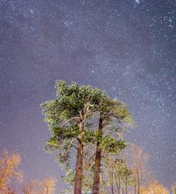 Big Bear Sky