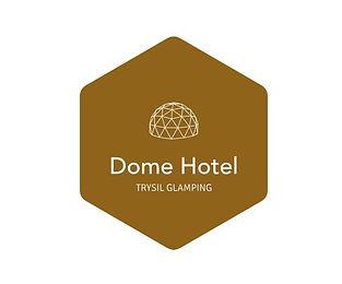 dome hotel logo 3.JPG