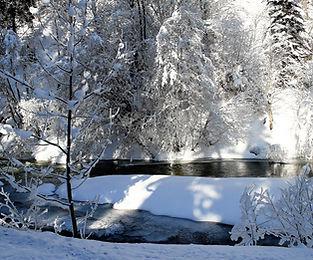 winter-2640622_1280.jpg
