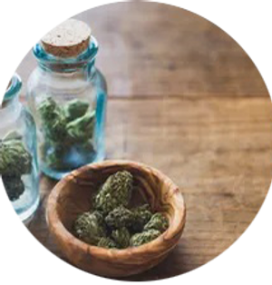 cannabis3.png