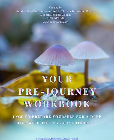 JOURNEY PRE PREPARATION WORKBOOK.png
