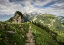 Already a Model of Efficiency, Switzerland Adds 3 New