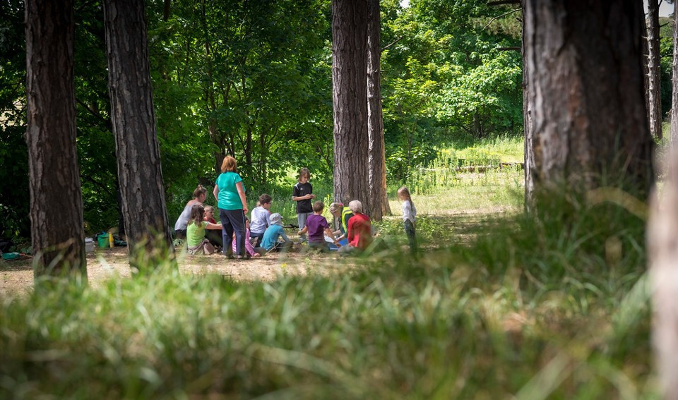 forest-schools-families.jpg