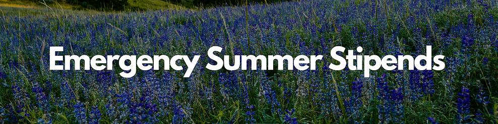 Emergency Summer Stipends.png