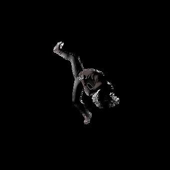 Dancer PNG.png